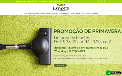 Portifólio - Melon Marketing Digital - Lavante Limpeza